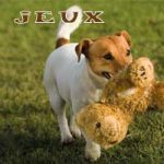 Jeux-interclub
