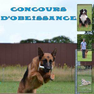Concours d'obéissance : 8 et 9 juin