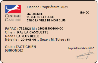 Licence CNEAC – Tactichien – club d'éducation canine